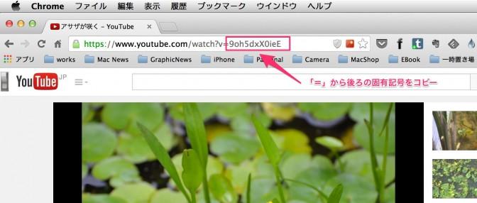 [ADPS]YouTubeの動画を表示する。