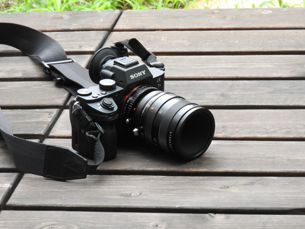 α7Ⅱ用レンズ その2 「LEICA MACRO ELMARIT R 60mm」